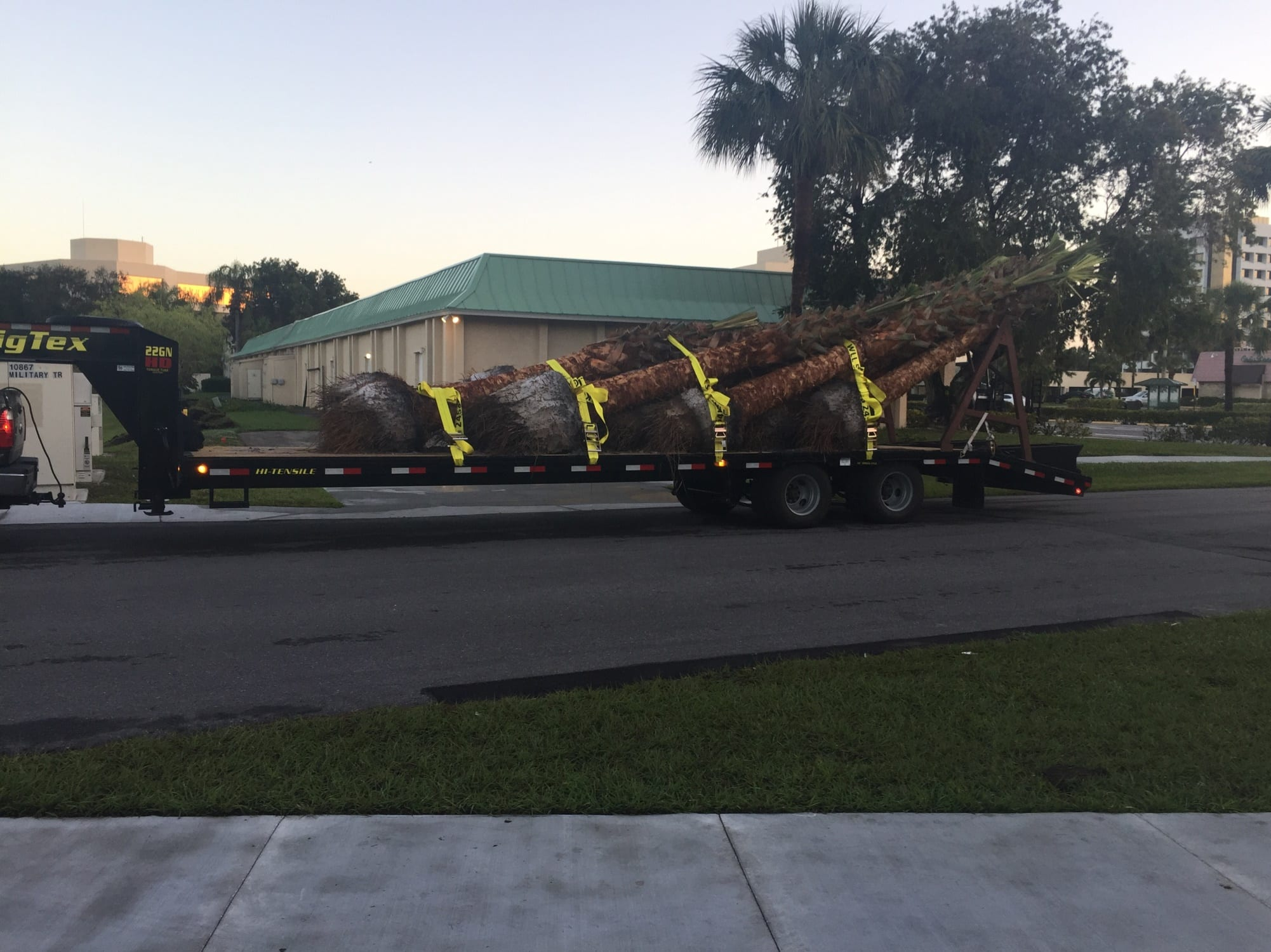 Tree Hauling $3 per loaded mile